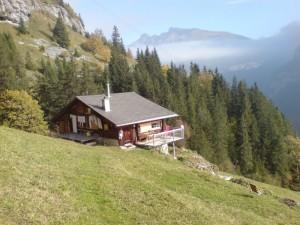 дом на склоне холмика